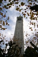 Campanile Through The Trees by RyanRadical