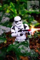 First Order StormTrooper by StormSnaps