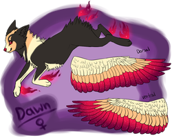 Dawn Reference 1.0 by jay-fruit
