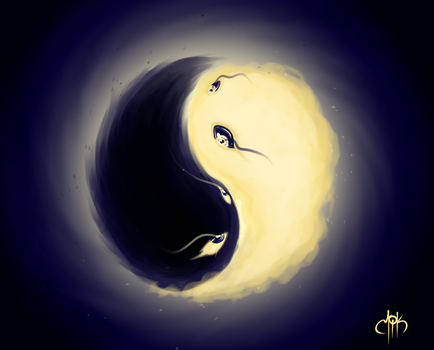 Yin and Yang by Mikael-Art