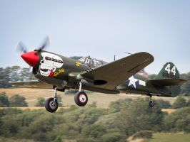 Curtiss P-40M Kittyhawk by amipal