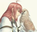 Rufus Barma and Dove by Aki-rain