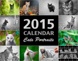 2015 Calendar - Cats Portraits by BenHeine
