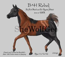 VHR: Black and Tan by SheWolfGeo