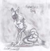 African Wild Dog sketch by InokoYamaniko