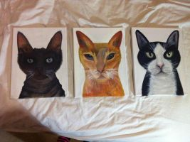 'Ryan's Cats' - Acrylic Paintings - (Feb 2012) by AiluroArtist