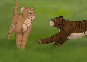 Squirrelflight and Brambleclaw by cycle-of-menace