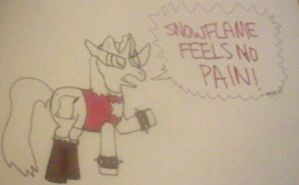 SnowFlame, Pony of Awesome and Coke by InvaderKez