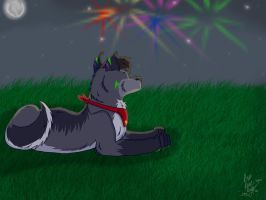 Happy 4th of July - 2012 by CodyTheHusky