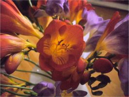 Vase of Freesias IV by EtherealGothica