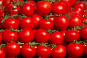 Tomato Grid by parallel-pam