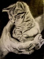 Tiny kitty by MagneticartAgnes