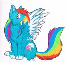 Rainbow Dash Wolf by Silent-Shadow-Wolf