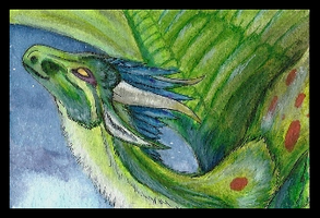 ACEO TaigaAmur: Nightflight by LabradoriteWolf