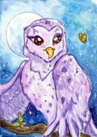 Purple Owl by Starrydance