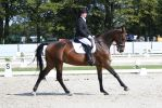Outdoor Brabant Stock 33 by chronically