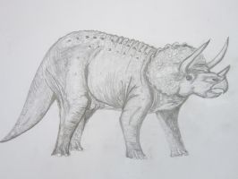 Triceratops by nosepace
