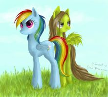 Ponies by LimePrinzessin
