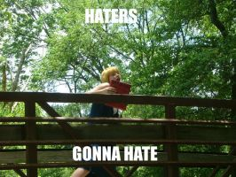 Haters gonna hate by doctortanuki