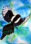 Magpie by Verenique