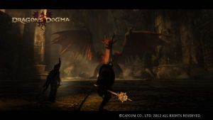Dragon's Dogma - Do You Challenge Me Arisen? by DarkStarAngelo