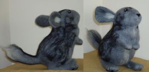 Chinchilla by Lobster-Ball