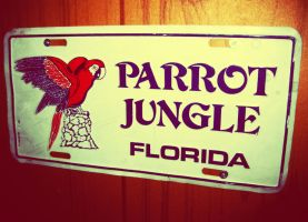 Parrot Jungle by Postreman