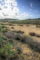 Dunes and Moor by Azagh