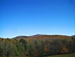 Fall Foliage Series #12. by Sparkle-Photography
