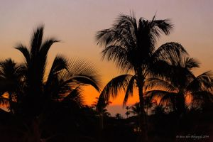 Hawaiian Sunset 1 by Mac-Wiz
