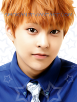 Xiumin request by SMoran