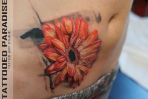 cover up scars, gerbera by dopeindulgence