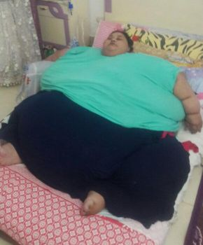 Eman Ahmed Abd El Aty 1100 Pound woman by Theinflator