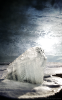 Destruction by sun and ice by vincentjongman