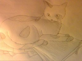 Laying On The Paper by peanuty222