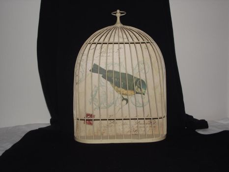 french bird cage stock 8 by erratic-stock