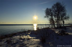 Winter sun! by secludedspace