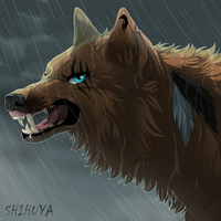 |PC| Angry sky with rain by Deyanel