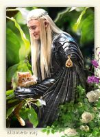 Thranduil and the one-eared kitten by Betka