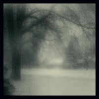 Blizzard by intao