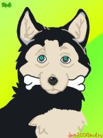 husky with a bone by Spaik-The-Best-777