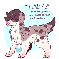 thad by creamwave