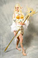 warrior of light by diana-ookami-chan