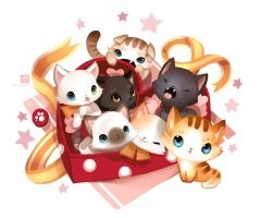 Kitten Chocobox by ethe