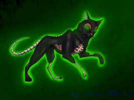 The necromancer cat by Suomen-Ukonilma