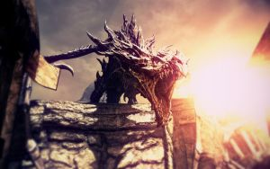 The Elder Scrolls V: Skyrim Dragon I by MuuseDesign