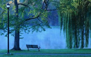 Foggy Morning 2 by Scotophobic