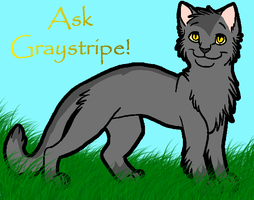 Ask Graystripe by Ask--Graystripe