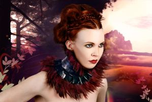 Burgundy collar by Samantha by collective-chaos