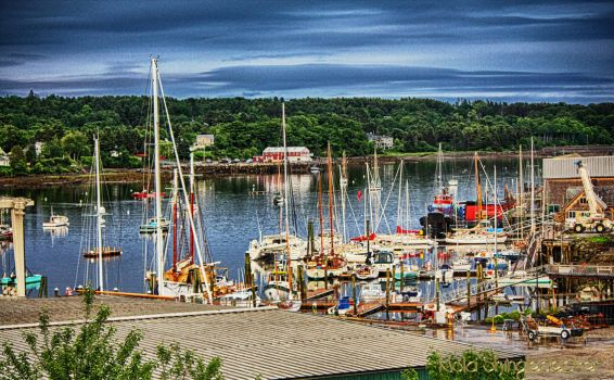 Maine Harbor by Nolamom3507